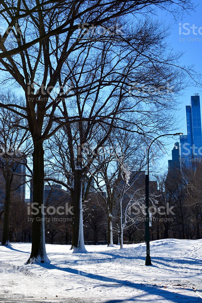 New York City snow in Manhattan Central Park in winter stock photo