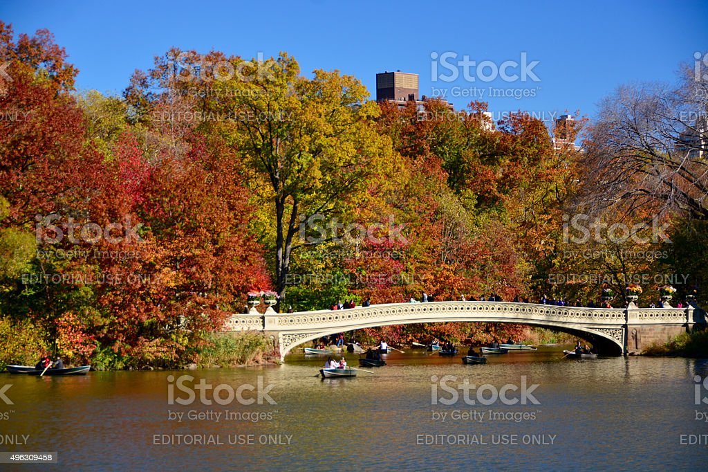 New York foliage autumn stock photo