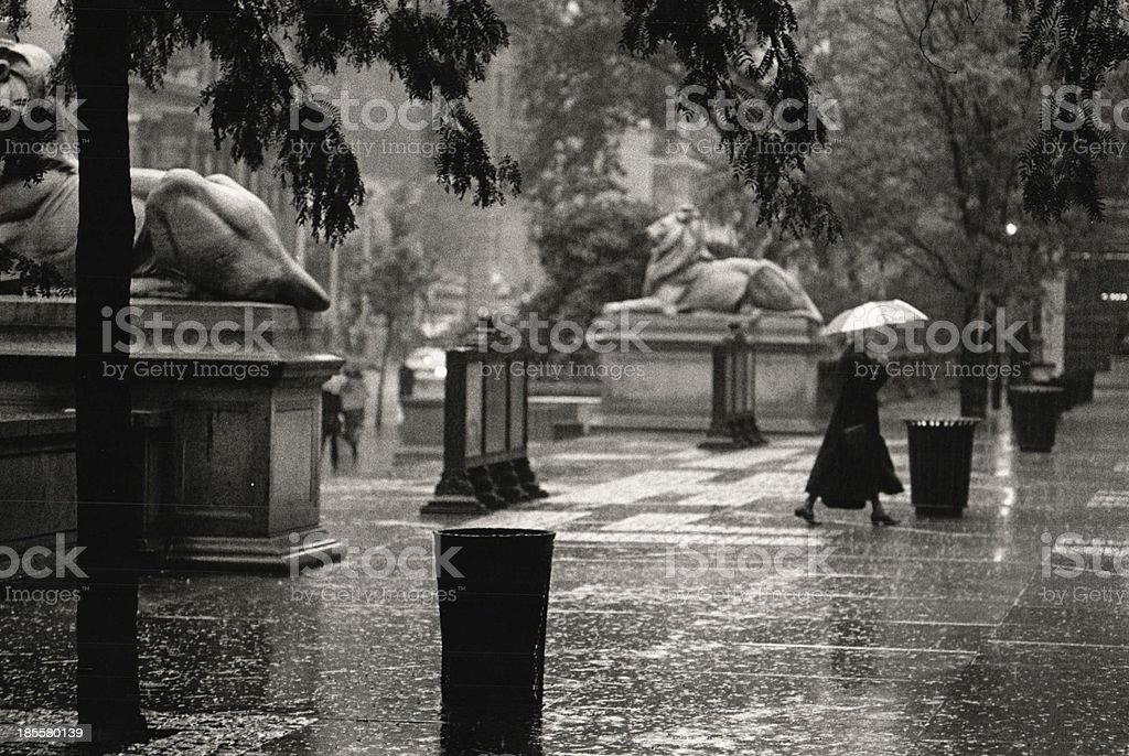 New York Public Library rainy day stock photo