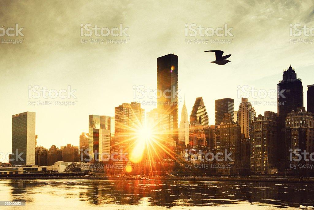 New York Skyline at sunset from Roosevelt Island. stock photo