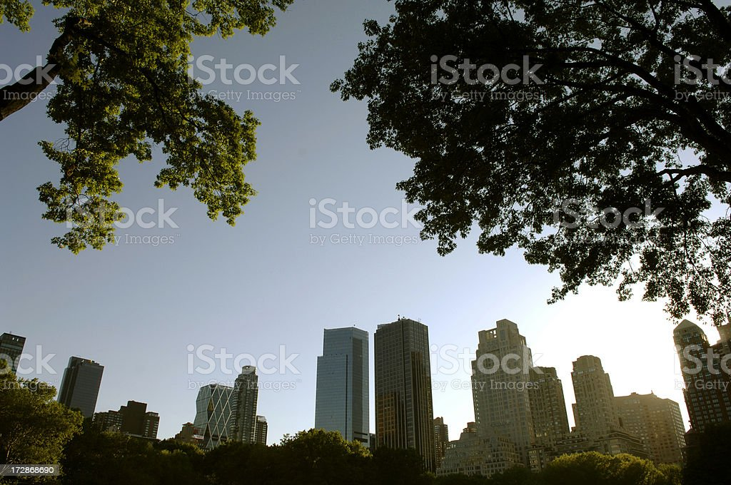 new york skyline from central park royalty-free stock photo