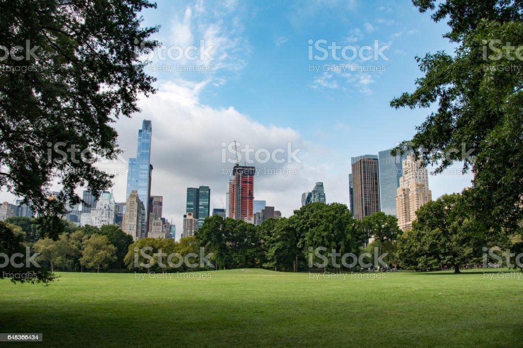 New York skyline seen from Central Park in Manhattan stock photo