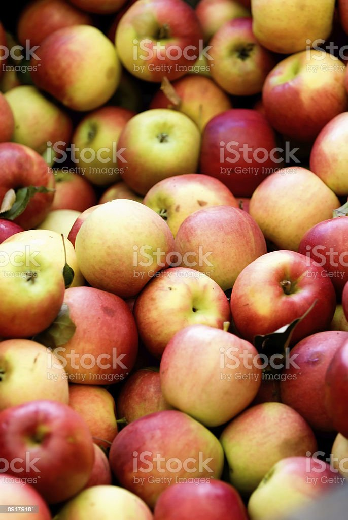 New York State Apples stock photo