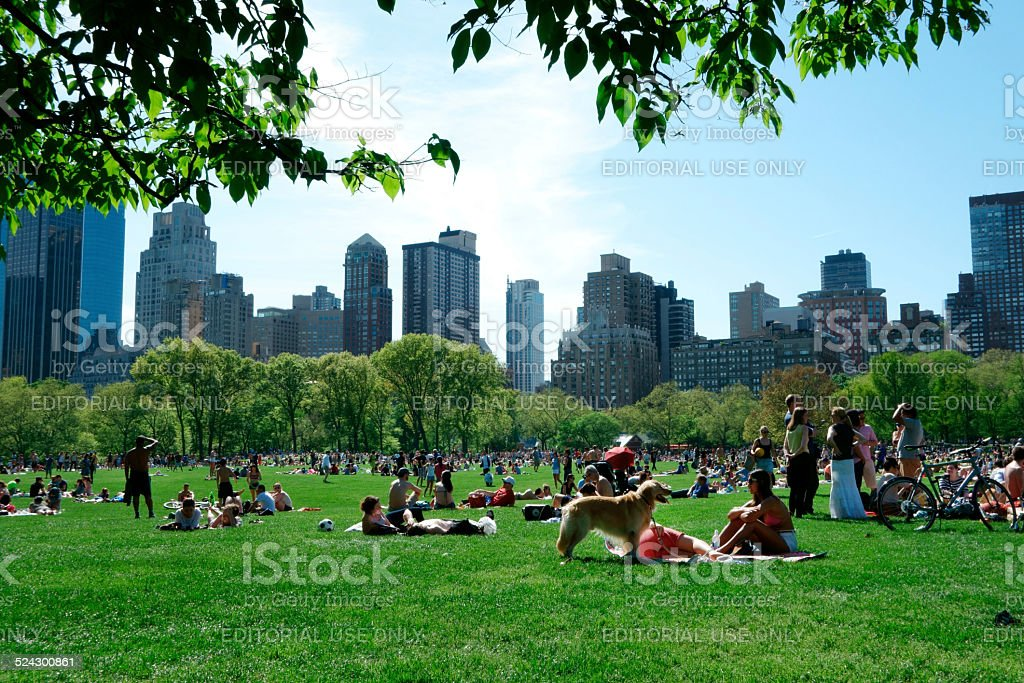 New Yorkers in central Park stock photo