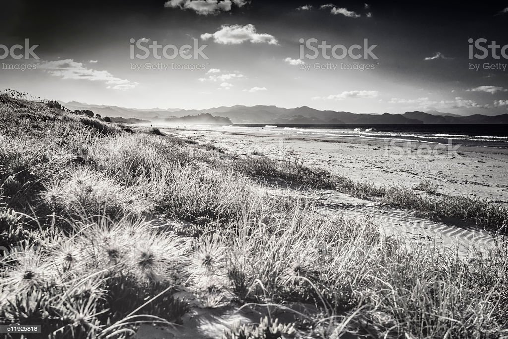 New Zealand Beach, Vintage Image Processing stock photo