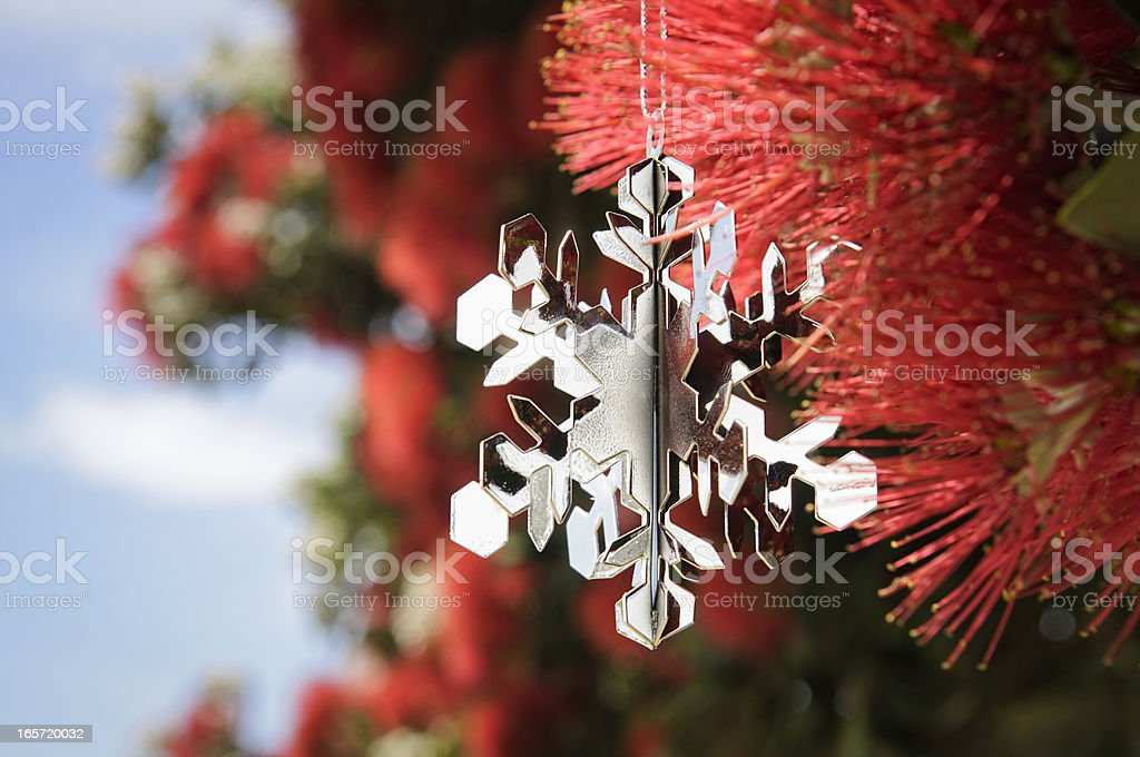 New Zealand: Christmas In Summer stock photo
