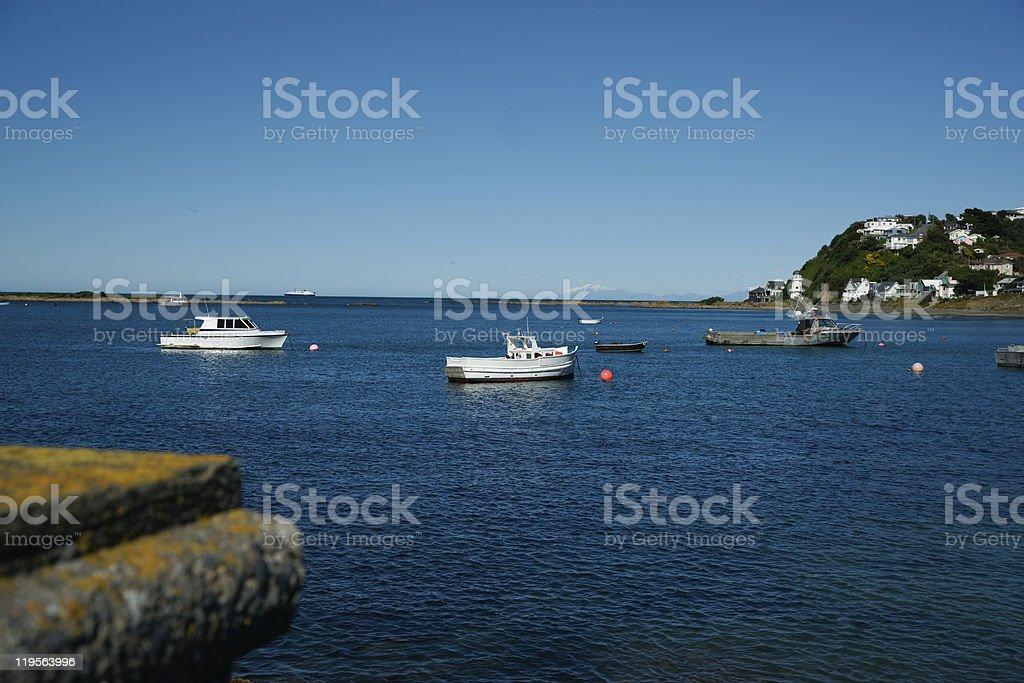 New Zealand coastal scene, Island Bay. stock photo