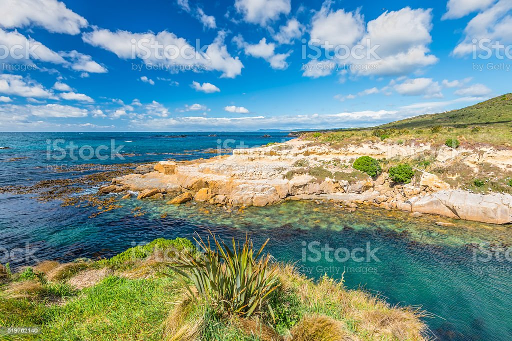 New Zealand colorful coast landscape stock photo