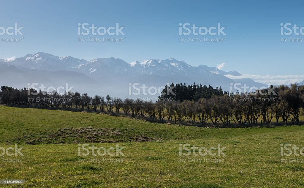 New Zealand countryside stock photo