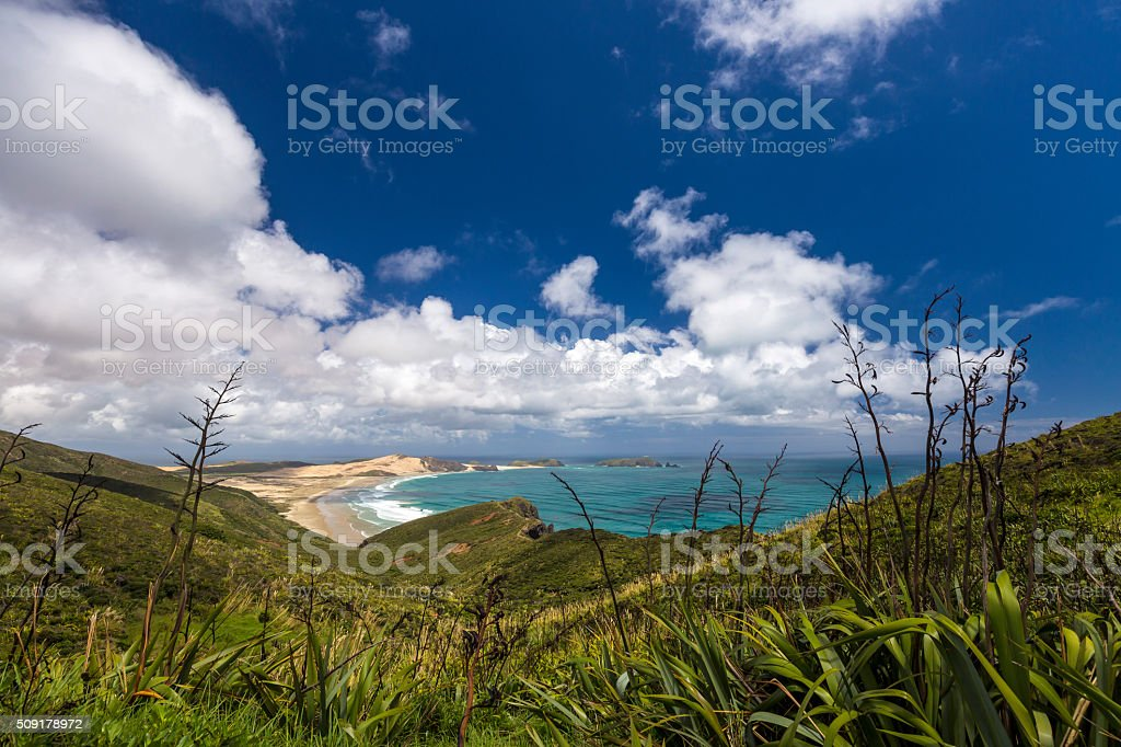 New Zealand Coutryside stock photo