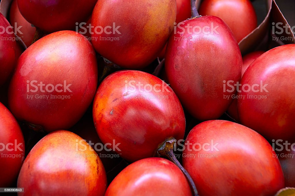 New Zealand evergreen tree fruit vegetable, Tamarillo stock photo