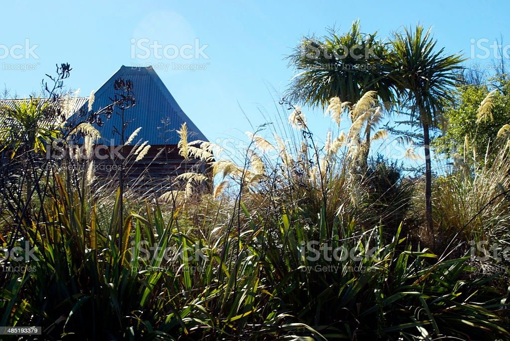 New Zealand Flora with old Hop House Roof stock photo