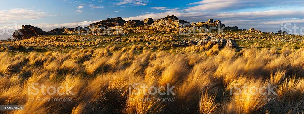 New Zealand Highlands Panorama stock photo