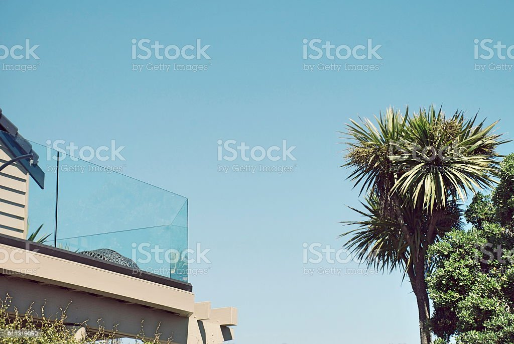 New Zealand Home and Ti Kouka (Cabbage Tree) Background stock photo