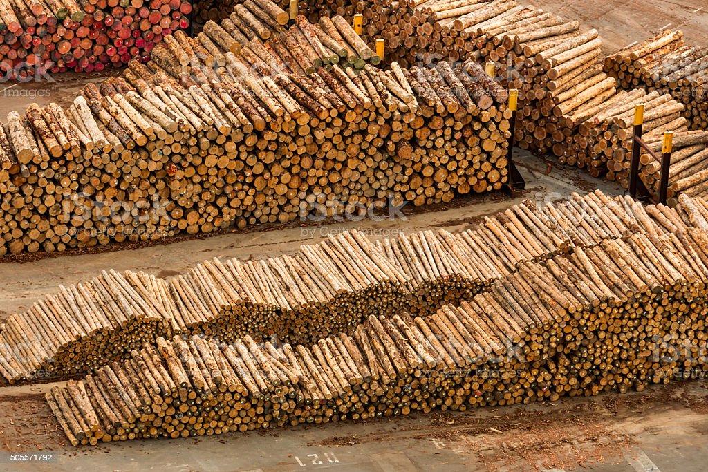 New Zealand Logs stock photo