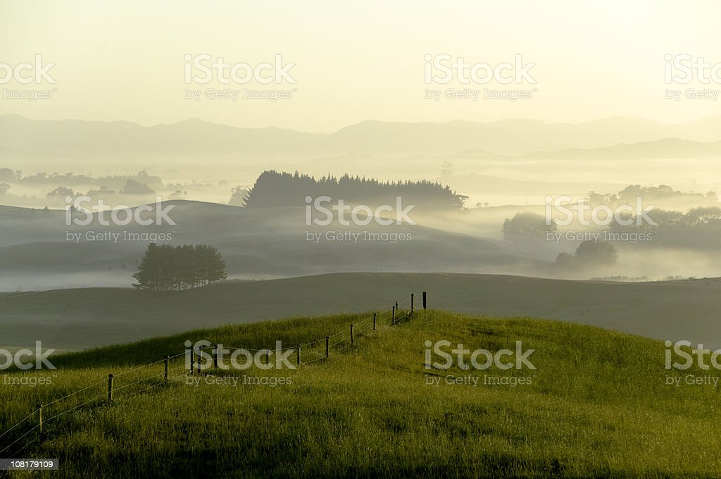 New Zealand Morning royalty-free stock photo