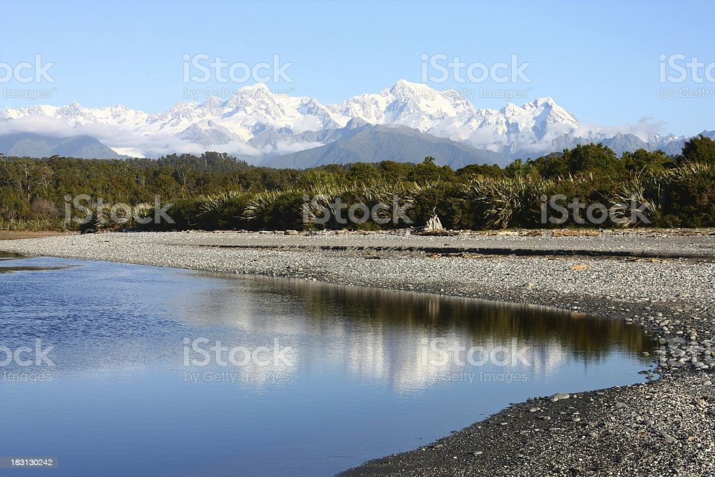 New Zealand nature stock photo