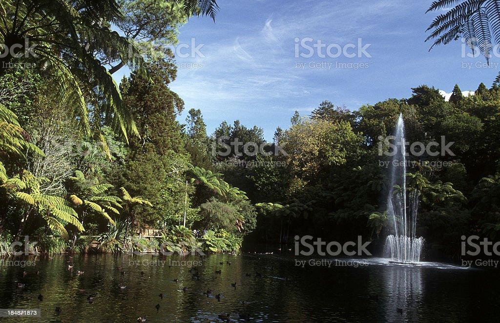 New Zealand, North Island, Taranaki. stock photo