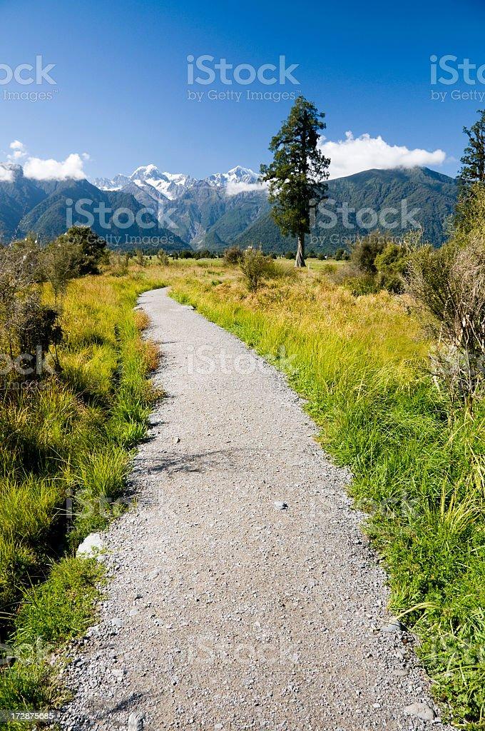 New Zealand Path royalty-free stock photo