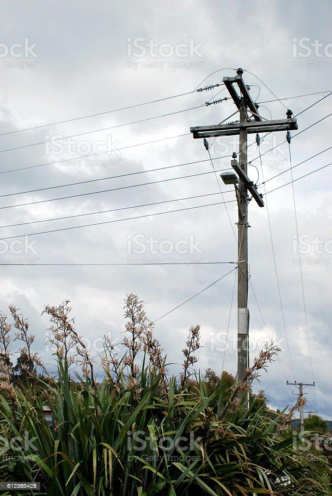 New Zealand Powerline stock photo