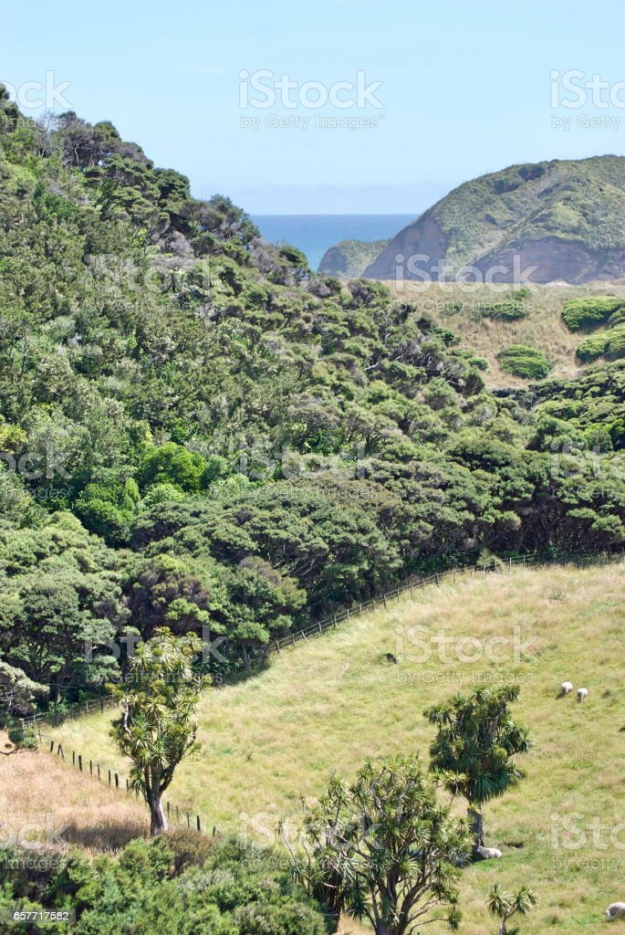 New Zealand Rural Countryside View stock photo