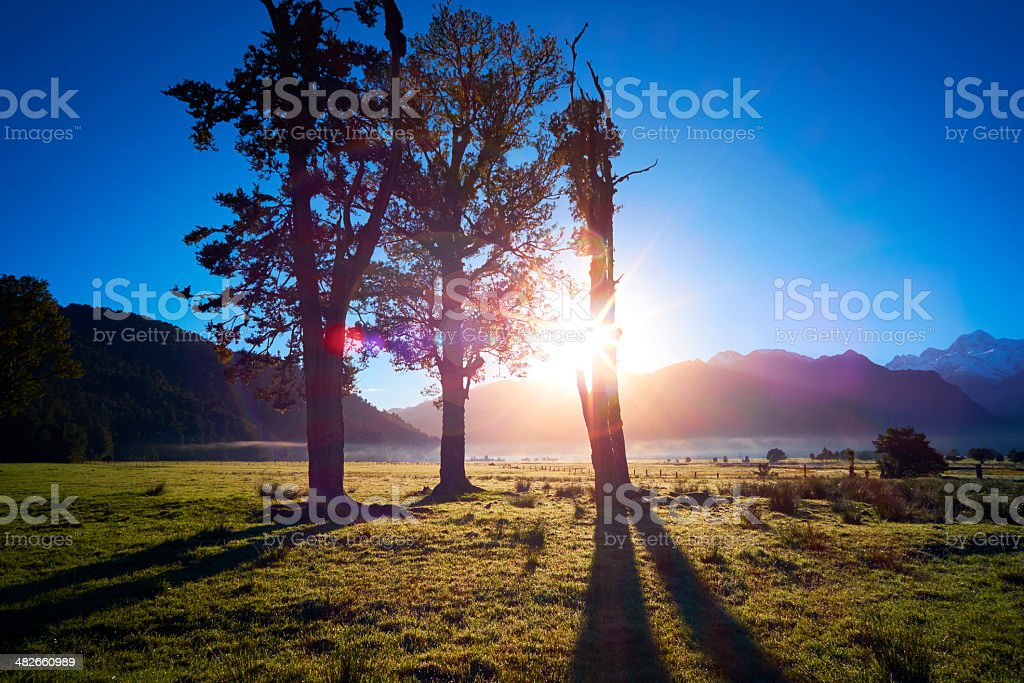 New Zealand Scenic At Dawn stock photo
