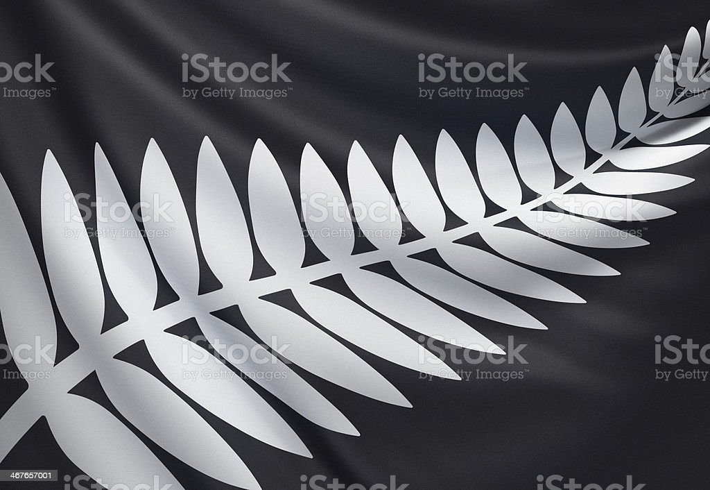 New Zealand silver fern flag stock photo
