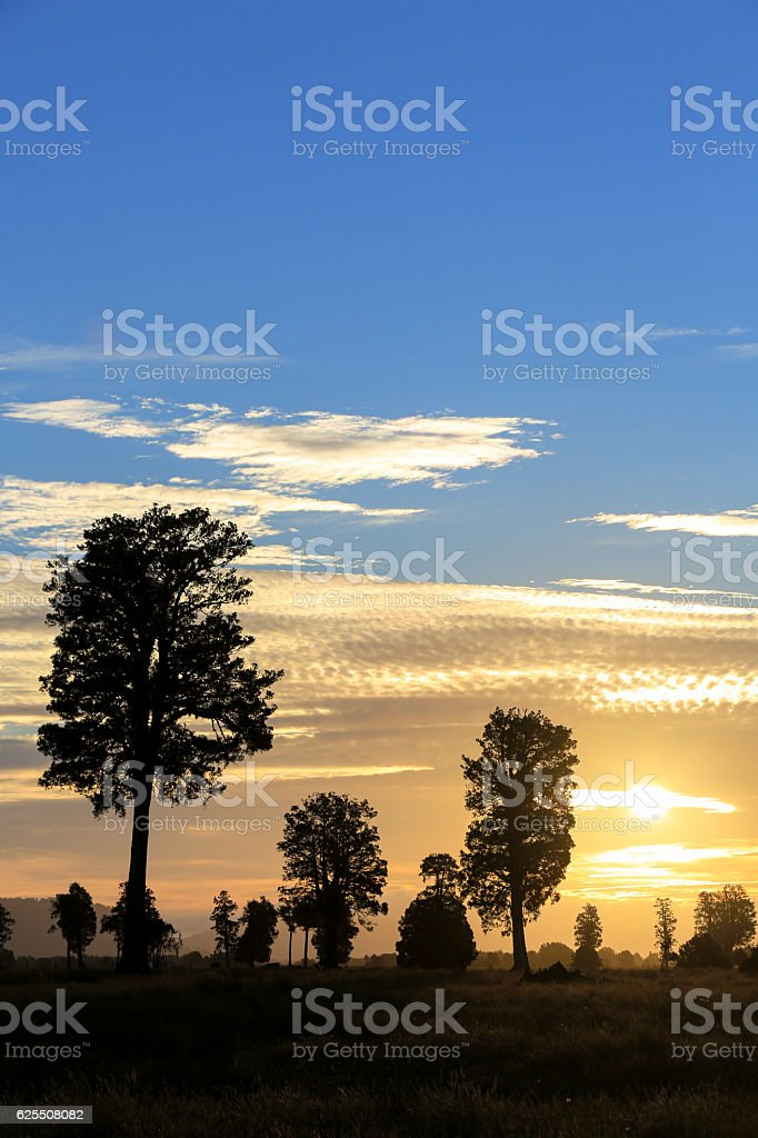New Zealand, South Island Sunset Landscape, Fox Glacier Region stock photo