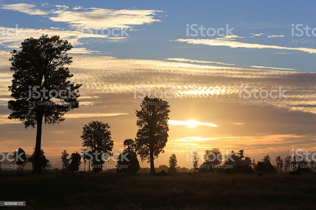 New Zealand, South Island Sunset Landscape, Fox Glacier Region stock photo