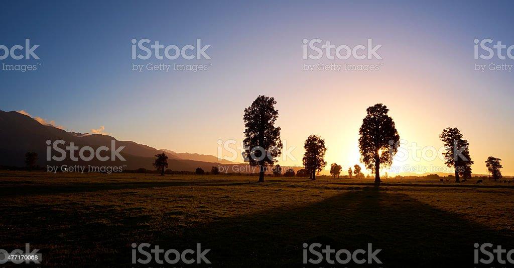 New Zealand Sunset Near Fox Glacier stock photo