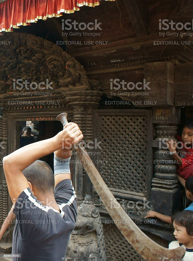 Newar man sacrificing a buffalo stock photo