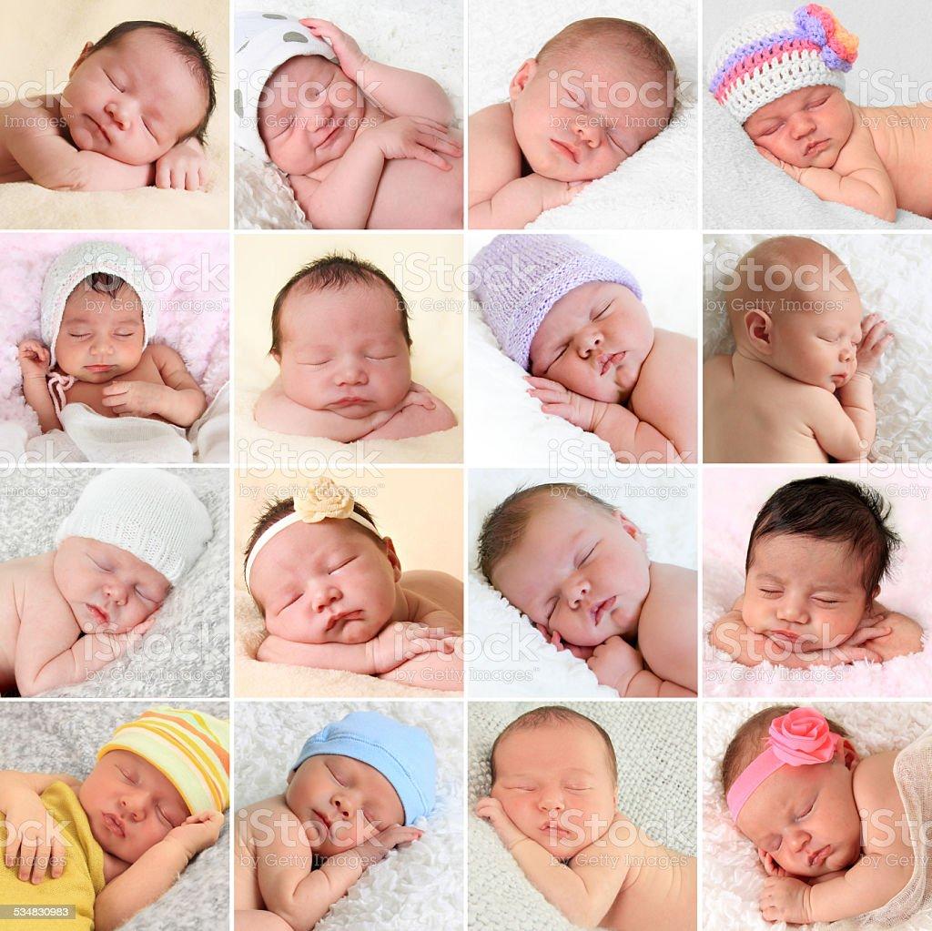 Newborn babies collage stock photo