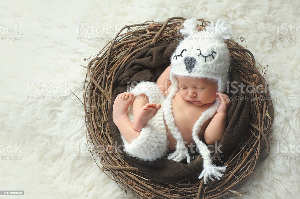 Newborn Baby Boy Wearing a White Owl Hat stock photo
