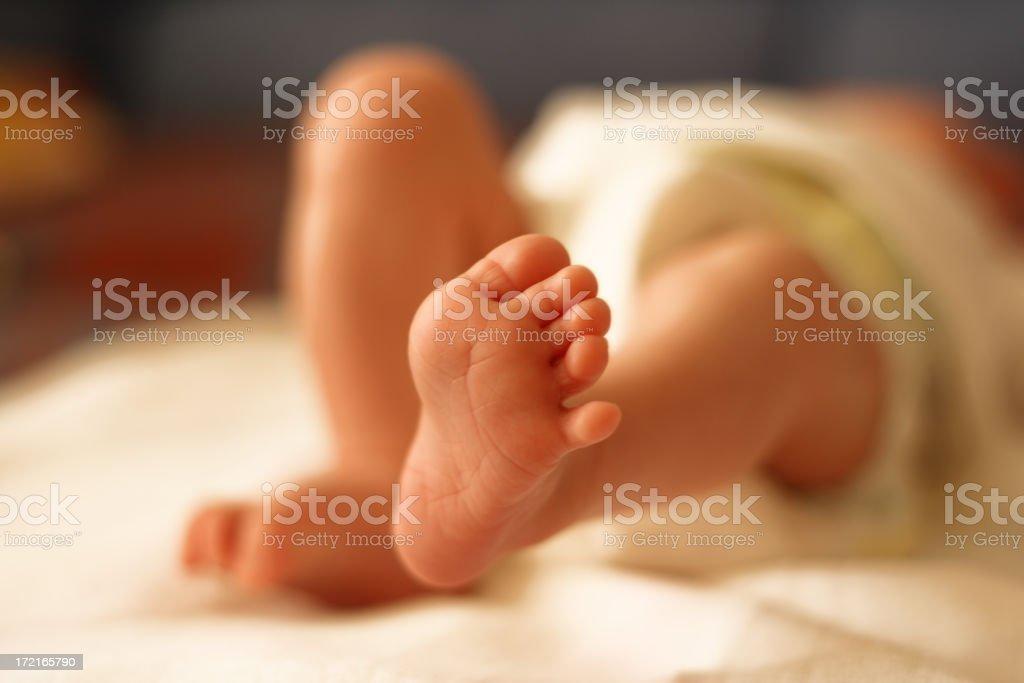 Newborn baby feet royalty-free stock photo