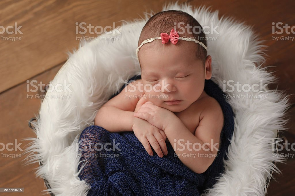 Newborn Baby Girl Sleeping in Fur Lined Bucket stock photo
