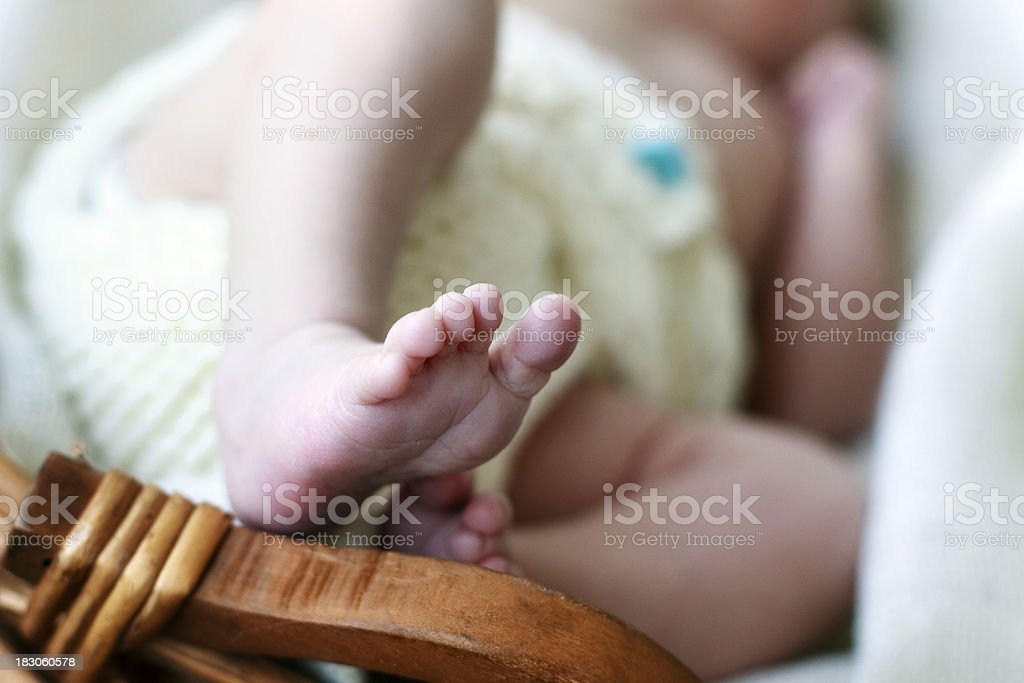 Newborn Baby in a Basket royalty-free stock photo