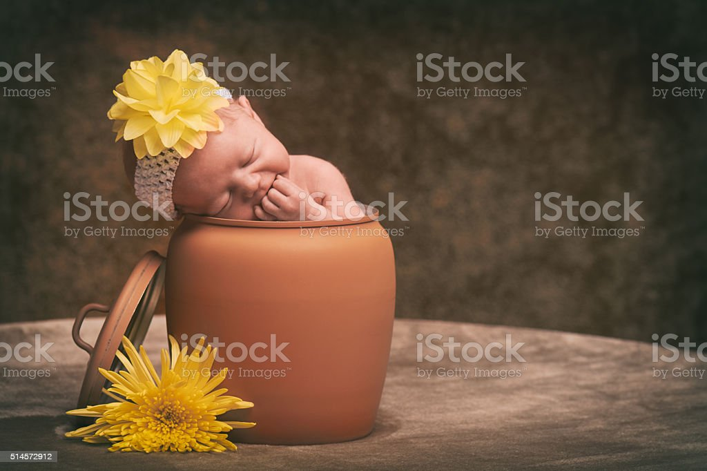 Newborn baby in plant pot with flowers stock photo