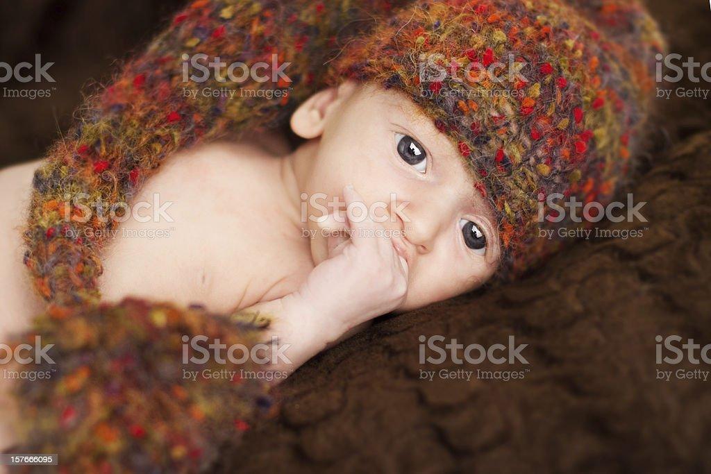 Newborn baby in woolen brown hat royalty-free stock photo
