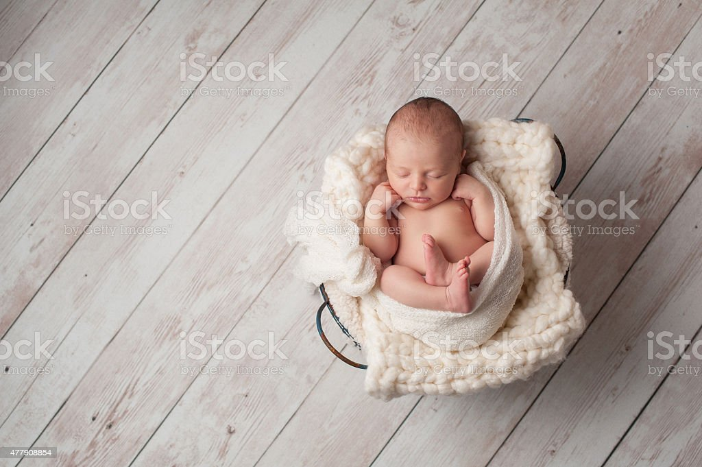 Newborn Baby Sleeping in a Wire Basket stock photo