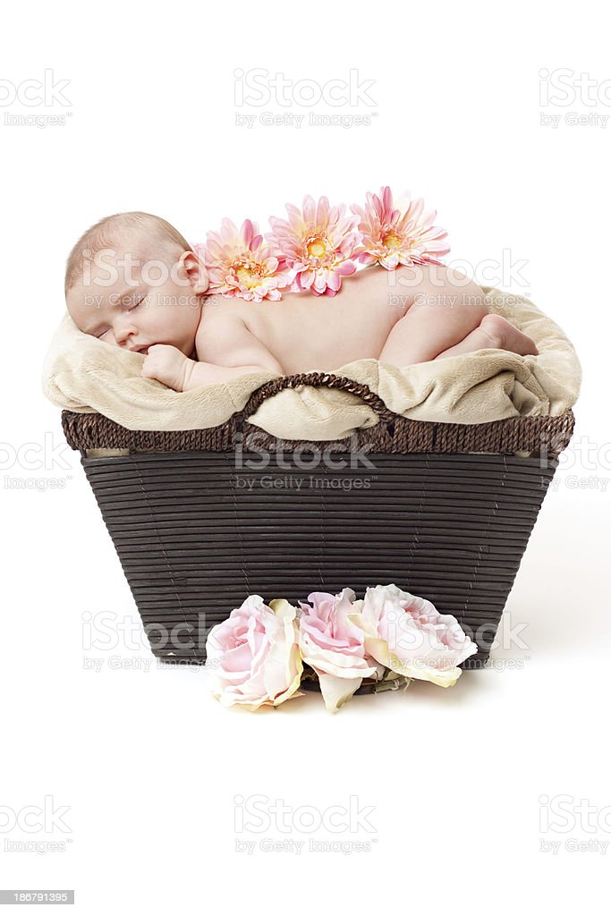 Newborn Baby Sleeping on Basket with Flowers royalty-free stock photo