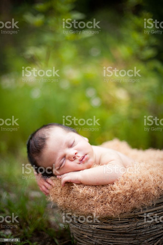 Newborn Baby Sleeping Peacefully Outdoors, in Basket, With Copy Space royalty-free stock photo