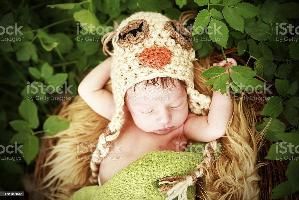 Newborn Baby Wearing Owl Hat royalty-free stock photo