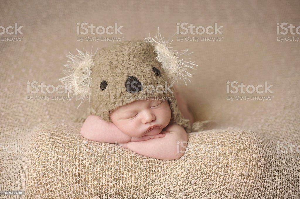 Newborn Boy Sleeping in Koala Knit Hat royalty-free stock photo