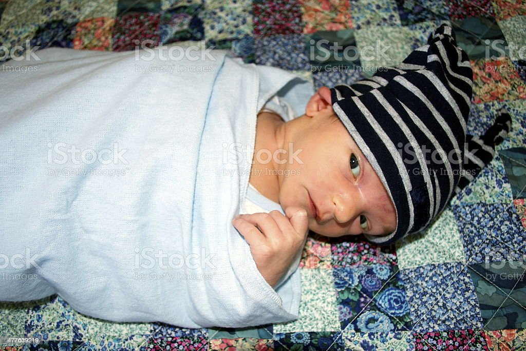 Newborn Boy Wrapped in Blue royalty-free stock photo