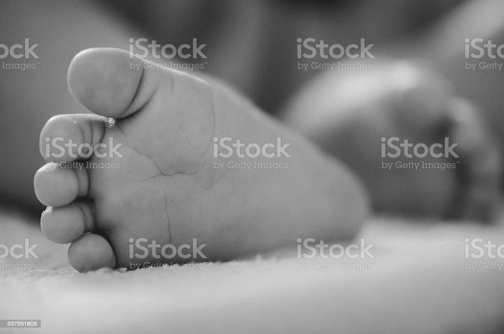 Newborn feet stock photo