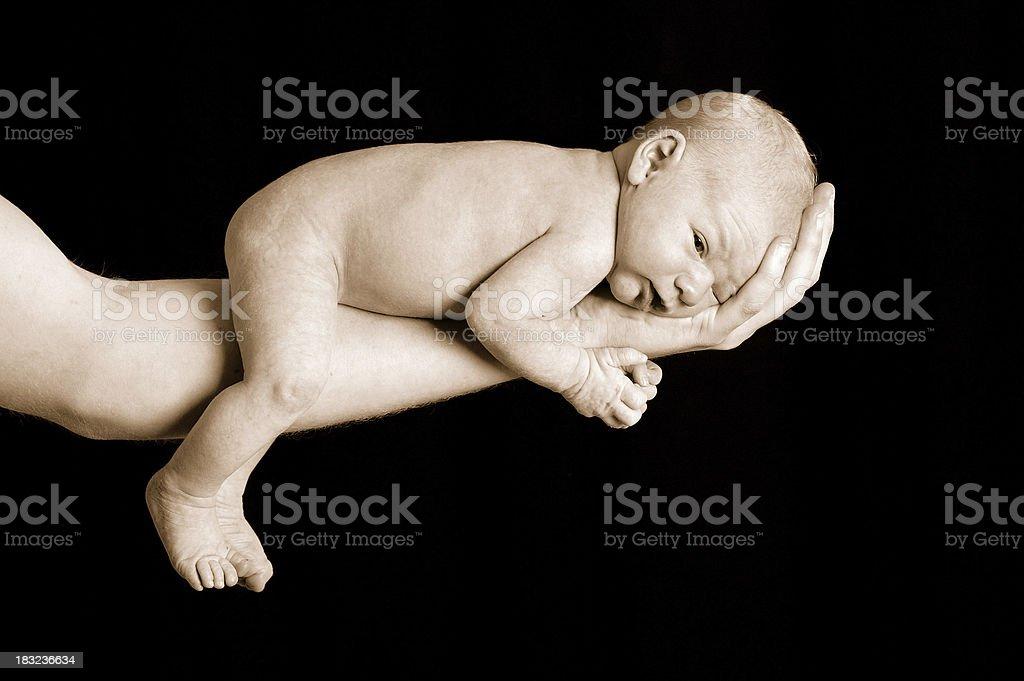 newborn on fathers arm royalty-free stock photo