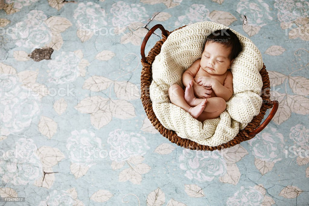 Newborn Sleeping in Basket royalty-free stock photo