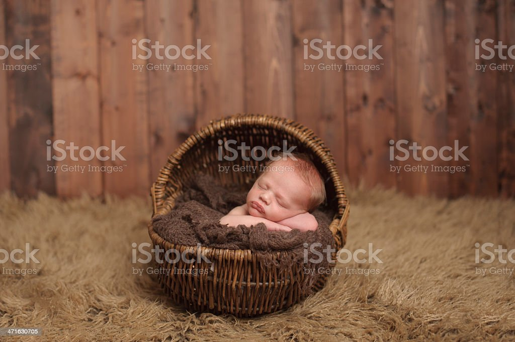 Newborn Sleeping in Wicker Basket stock photo