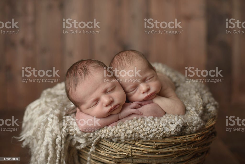 Newborn Twins Sleeping in a Basket royalty-free stock photo