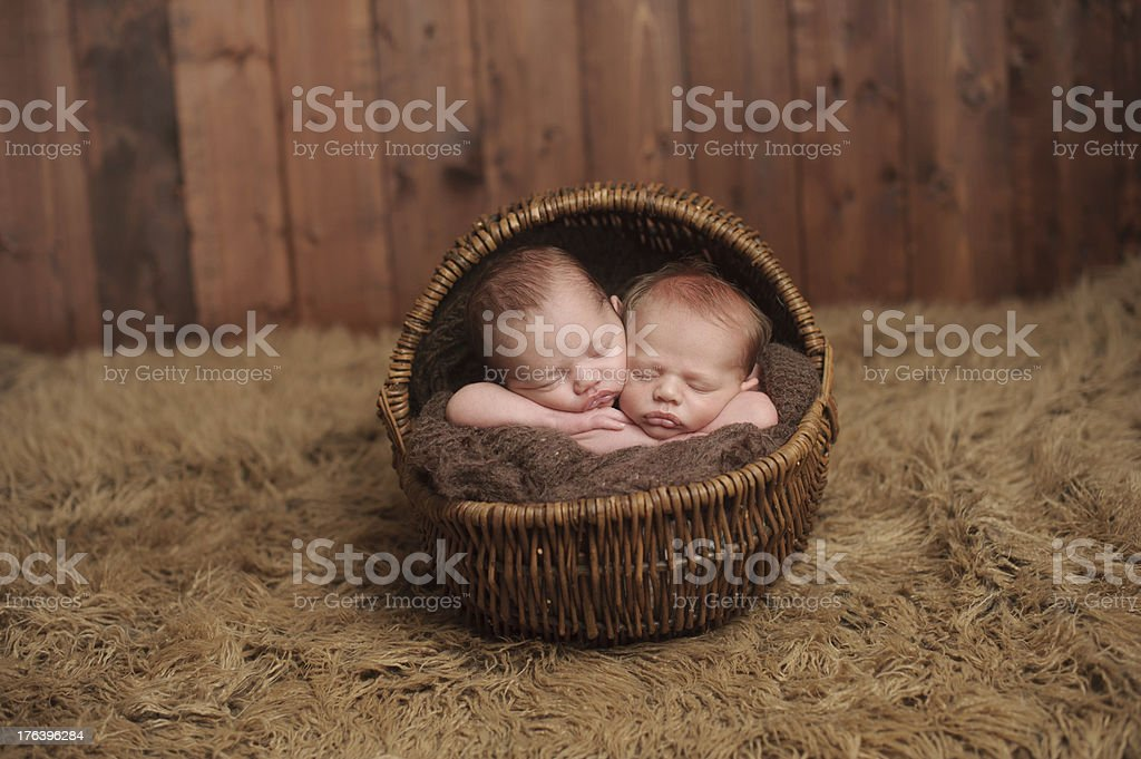Newborn Twins Sleeping in a Basket stock photo